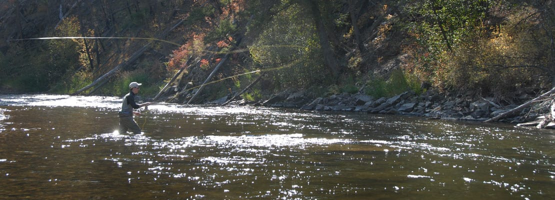 fishing for trout on rock creek in montana