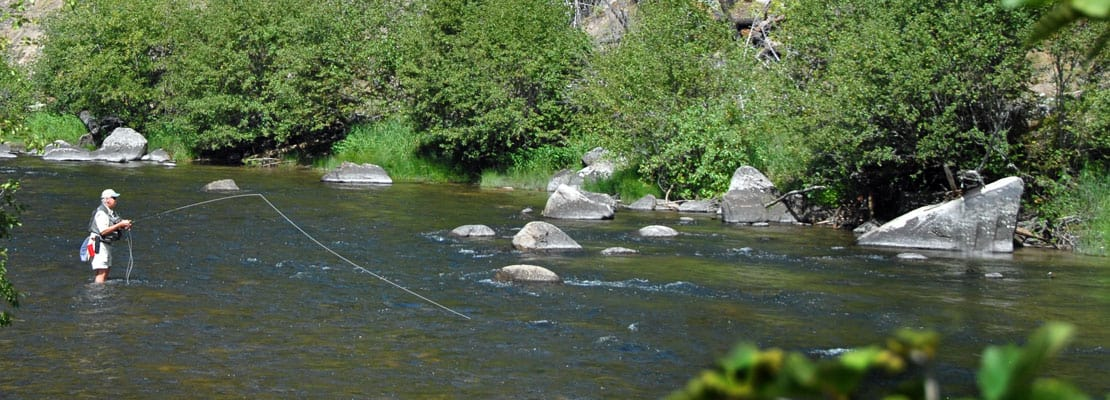 Montana blue ribbon trout stream vacation for Rock creek fishing