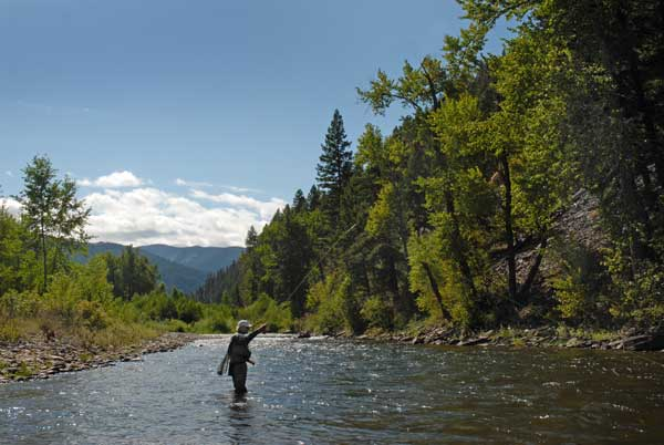Blue Ribbon Trout Fishing on Rock Creek in Montana