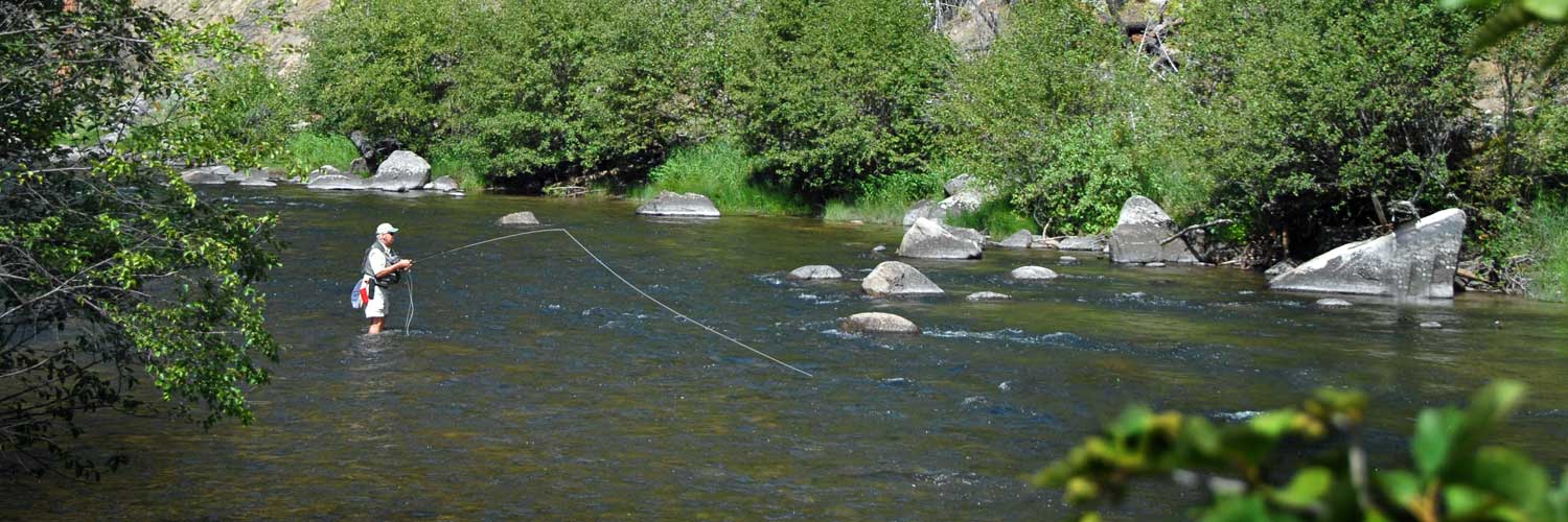 Casting a Fly Rod and Fishing Rock Creek, Montana