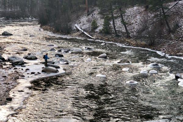 November Angler on Rock Creek