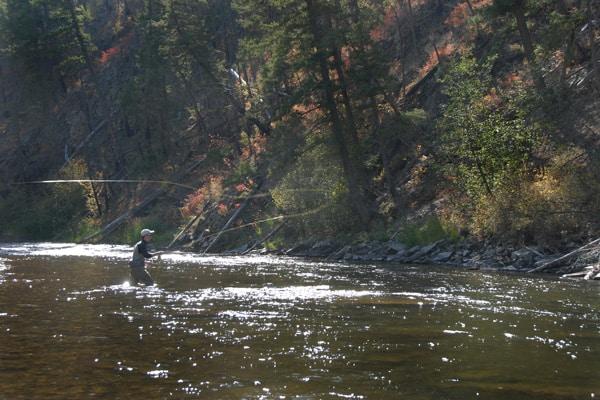 Rock Creek Fisher Casting