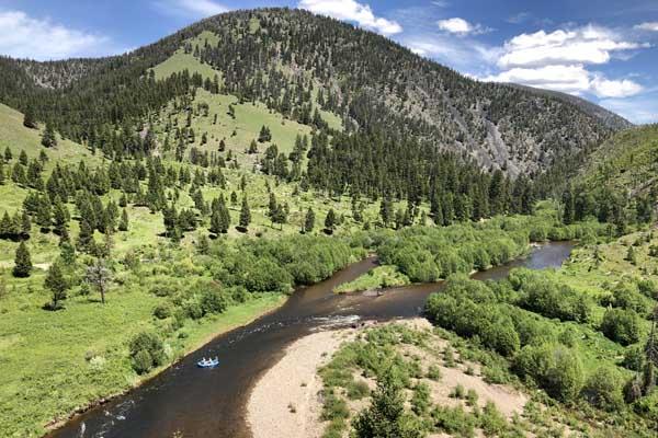 June Fishing near the Microburst on Rock Creek