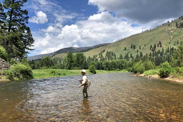 Fly Fishing Rock Creek in June